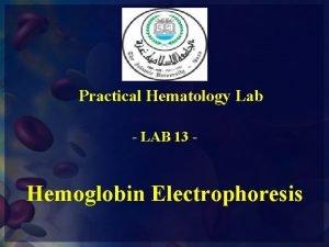 Practical Hematology Lab LAB 13 Hemoglobin Electrophoresis Electrophoresis