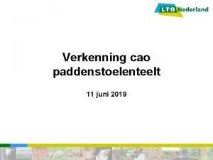 Verkenning cao paddenstoelenteelt 11 juni 2019 Verkenning cao