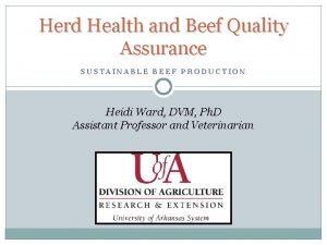 Herd Health and Beef Quality Assurance SUSTAINABLE BEEF