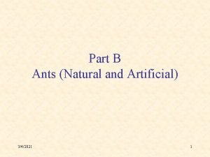 Part B Ants Natural and Artificial 342021 1