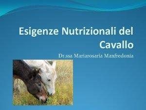 Esigenze Nutrizionali del Cavallo Dr ssa Mariarosaria Manfredonia