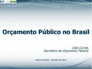 Oramento Pblico no Brasil Clia Corra Secretria de