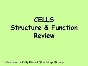 CELLS Structure Function Review Slide show by Kelly