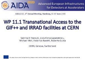 Advanced European Infrastructures for Detectors at Accelerators AIDA