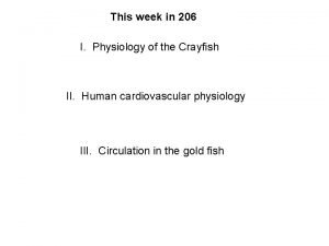 This week in 206 I Physiology of the