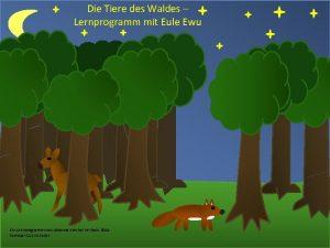 Die Tiere des Waldes Lernprogramm mit Eule Ewu