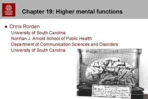 Chapter 19 Higher mental functions l Chris Rorden