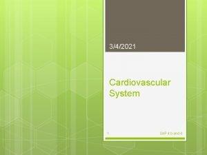 342021 Cardiovascular System 1 SAP 4 b and