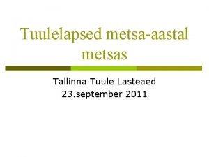 Tuulelapsed metsaaastal metsas Tallinna Tuule Lasteaed 23 september