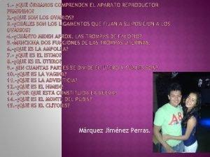 Mrquez Jimnez Perras Los organos del aparato reproductor