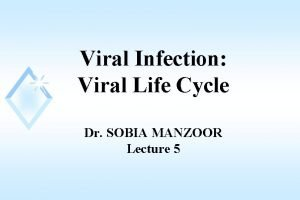 Viral Infection Viral Life Cycle Dr SOBIA MANZOOR