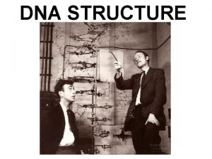 DNA STRUCTURE DNA Structure DNA is a polymer