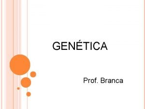 GENTICA Prof Branca GAMETAS PRODUZIDOS POR MEIOSE DEFINIES