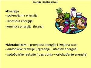 Energija i ivotni procesi Energija potencijalna energija kinetika