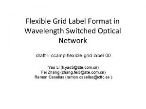Flexible Grid Label Format in Wavelength Switched Optical