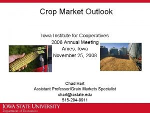 Crop Market Outlook Iowa Institute for Cooperatives 2008