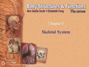 Chapter 6 Skeletal System 2009 Delmar Cengage Learning