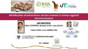 Identification of extracellular vesicles involved in chicken eggshell