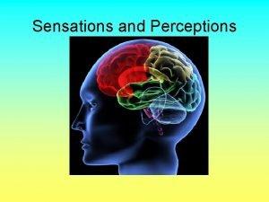Sensations and Perceptions Sensations and Perceptions Sensations can