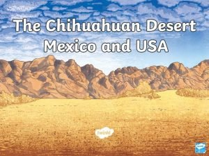 Where Is the Chihuahuan Desert The Chihuahuan Desert