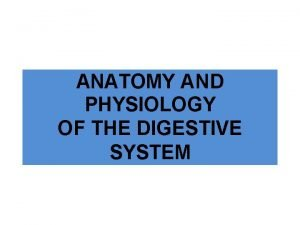 ANATOMY AND PHYSIOLOGY OF THE DIGESTIVE SYSTEM WHAT