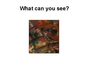 What can you see What else can you