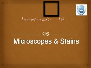 What is the Microscope The microscope magnifies the