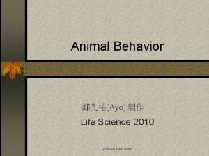 Animal Behavior Ayo Life Science 2010 Animal Behavior