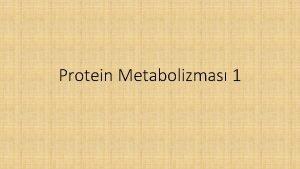 Protein Metabolizmas 1 Proteinlerin fonksiyonlar Proteinlerin hcre ve