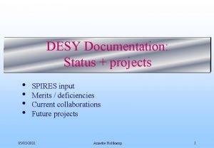 DESY Documentation Status projects SPIRES input Merits deficiencies