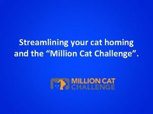 Streamlining your cat homing and the Million Cat