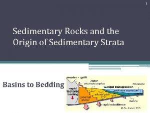 1 Sedimentary Rocks and the Origin of Sedimentary