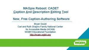 MAGpie Reboot CADET Caption And Description Editing Tool