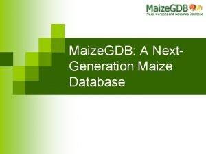 Maize GDB A Next Generation Maize Database What