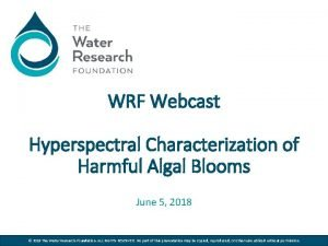 WRF Webcast Hyperspectral Characterization of Harmful Algal Blooms