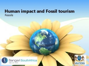 Human impact and Fossil tourism Fossils Human Impact