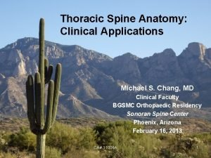 Thoracic Spine Anatomy Clinical Applications Michael S Chang