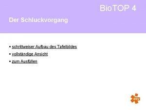 Bio TOP 4 Der Schluckvorgang schrittweiser Aufbau des