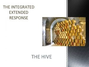 THE INTEGRATED EXTENDED RESPONSE THE HIVE Account Account