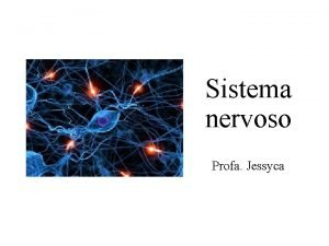 Sistema nervoso Profa Jessyca Sistema nervoso um dos