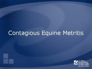 Contagious Equine Metritis Overview Organism History Epidemiology Transmission