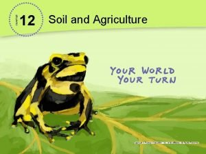 CHAPTER 12 Soil and Agriculture Possible Transgenic Maize