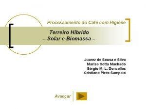 Processamento do Caf com Higiene Terreiro Hbrido Solar