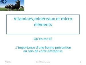Vitamines minreaux et microlments Quen estil Limportance dune