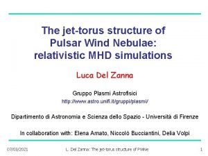 The jettorus structure of Pulsar Wind Nebulae relativistic
