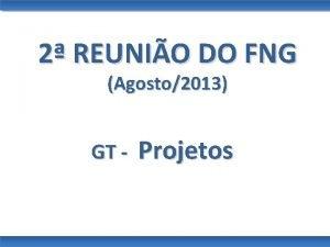 2 REUNIO DO FNG Agosto2013 GT Projetos GT