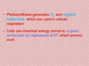Photosynthesis generates O 2 and organic molecules which