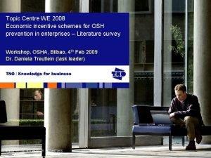 Topic Centre WE 2008 Economic incentive schemes for