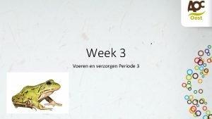Week 3 Voeren en verzorgen Periode 3 Wat