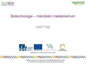 Biotechnologie mikrobiln metabolismum Josef Trgl Modernizace vuky technickch